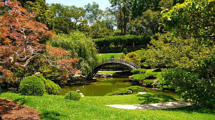 Japanese Garden at The Huntington Library
